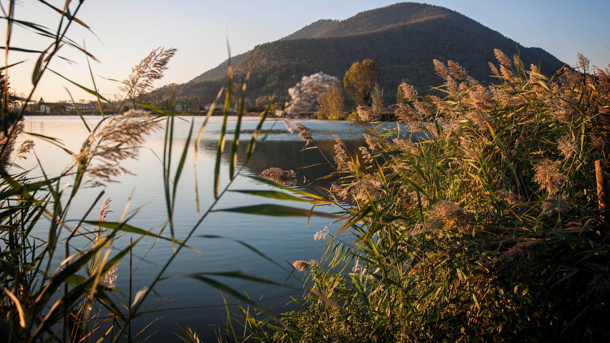 Area archeologica del lago della costa ad arqu petrarca for Planimetrie della cabina del lago
