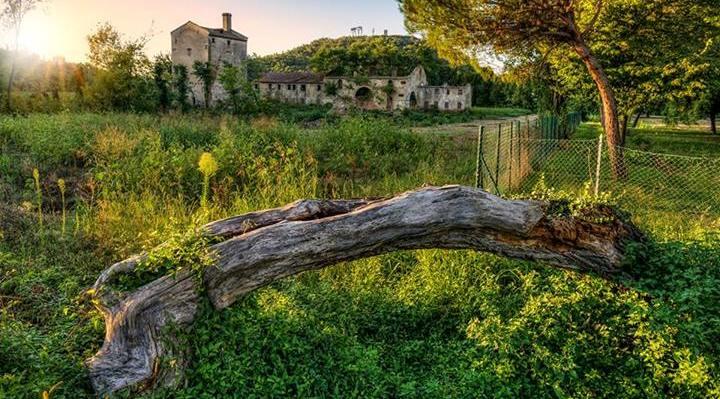 Torre al Lago a Montegrotto Terme