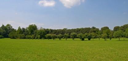 Area Archeologica di Le Motte di Sotto a San Martino di Lupari