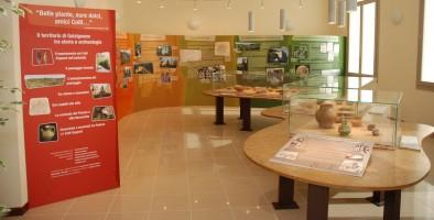 Musée Archéologique et d'Histoire Naturelle des Monts Euganéens de Galzignano Terme
