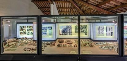 Museo Etnografico a Stanghella
