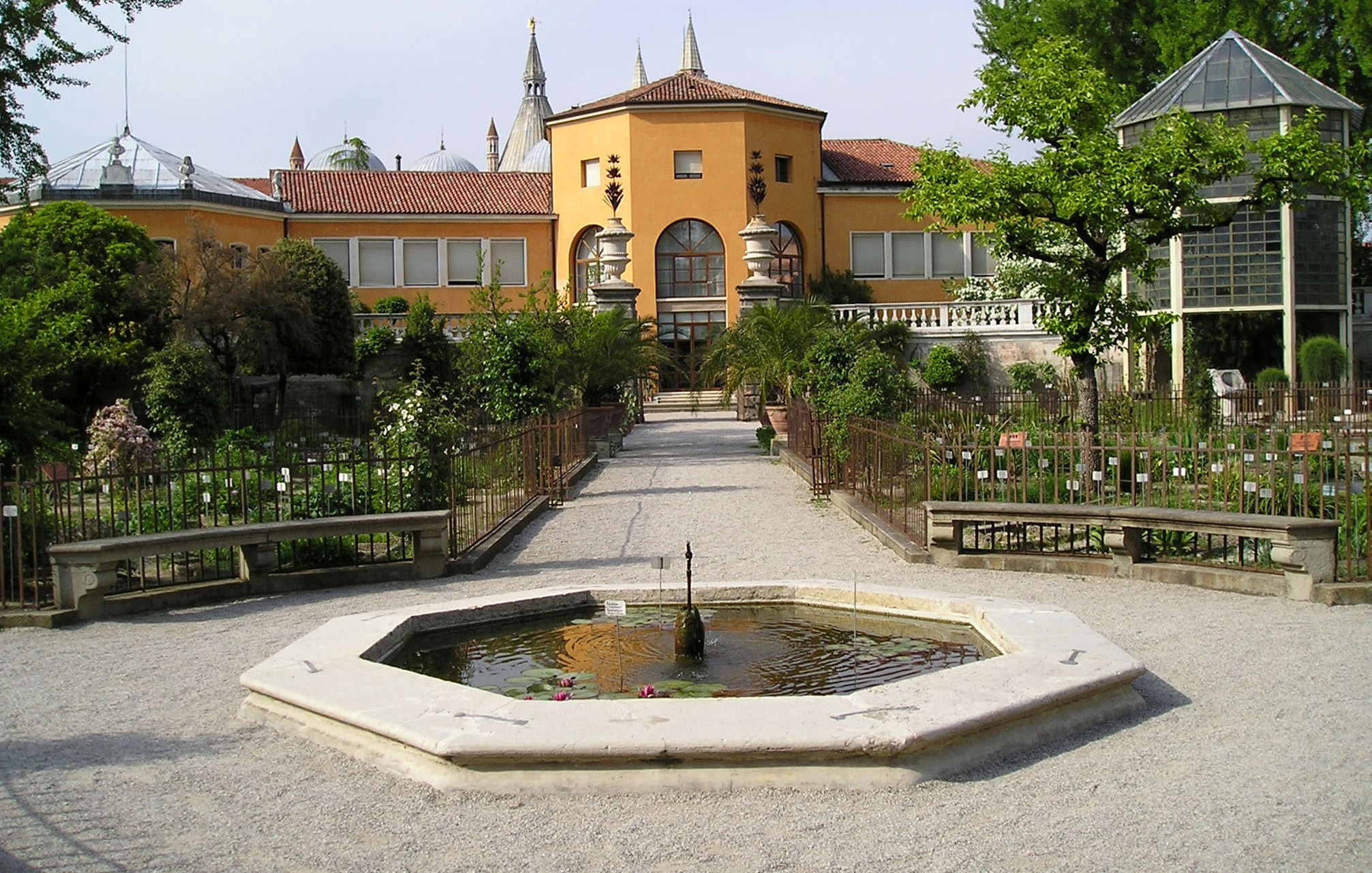 Botanische garten von padua thermae abano montegrotto for Giardino orto botanico firenze
