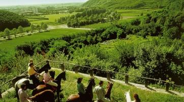 Tour à cheval au milieu des Monts Euganéens.