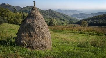 EstaRte a Galzignano Terme