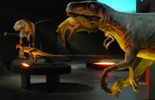 "Mostra ""Dinosauri. Giganti dall'Argentina"" a Padova"