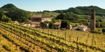 Sagra di San Martino e Mostra dei Vini DOC e DOCG dei Colli Euganei a Luvigliano di Torreglia